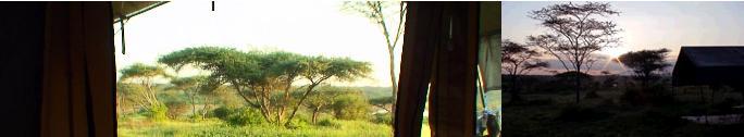 アフリカで迎える子連れ新年