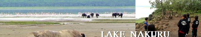 ナクル湖の環境問題