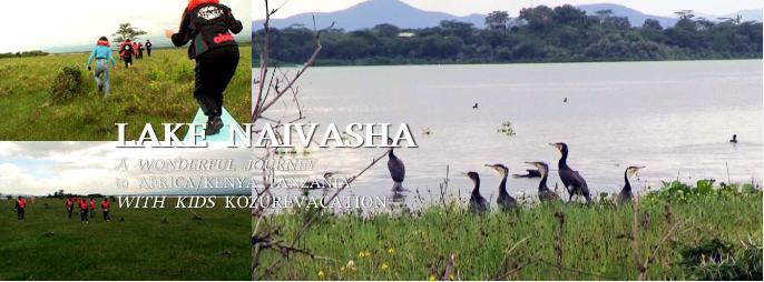 ナイバシャ湖の島