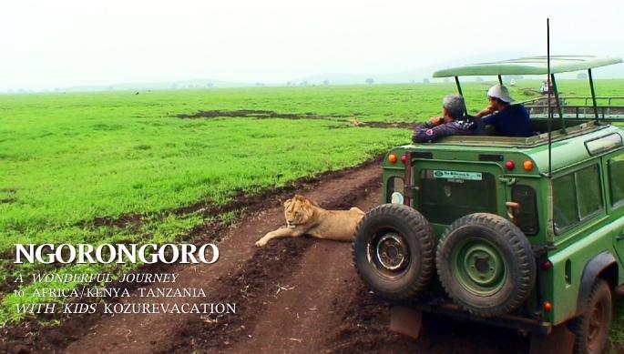 道に横たわるライオン