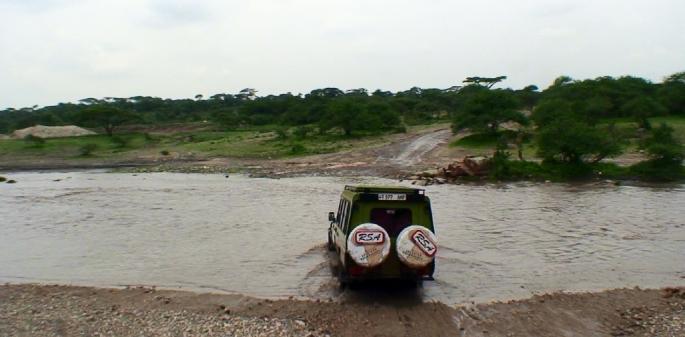 川を渡るサファリカー