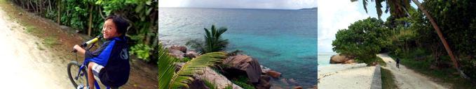 島の北側には美しい海が広がる