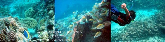 サンピエール島の海中写真