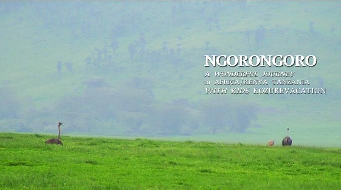 ンゴロンゴロのダチョウ
