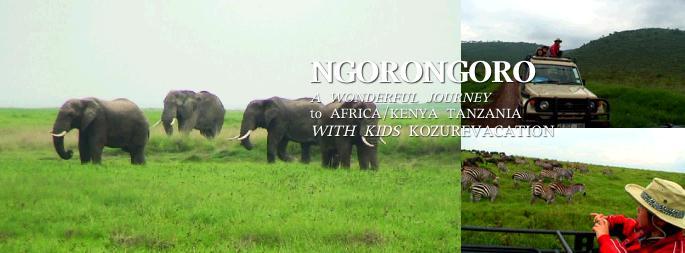サファリで見たアフリカゾウの群れ