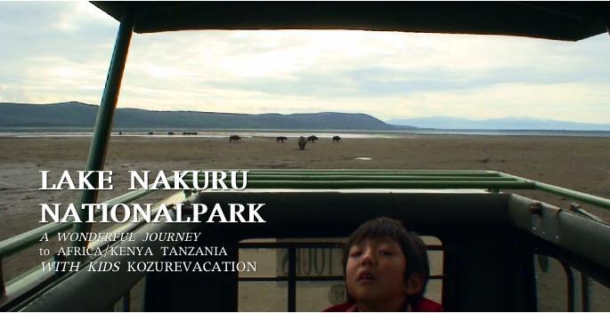 サファリカーでナクル湖のフラミンゴを見る子ども
