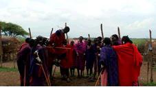 マサイのダンス