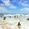 ブルネッキーズビーチでボディボードをする子供達