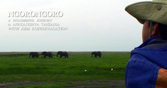 サバンナのゾウを眺める子供