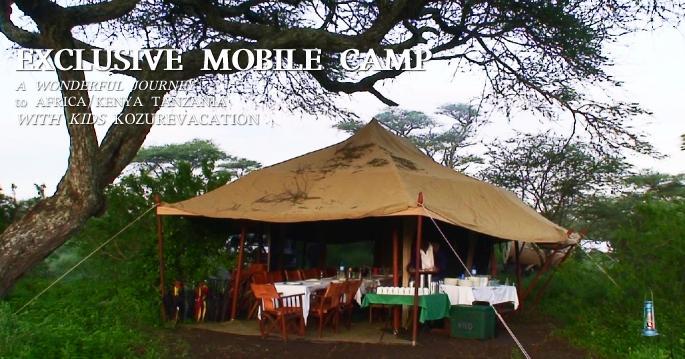 アフリカ旅行でかかる病気の症状と予防対策