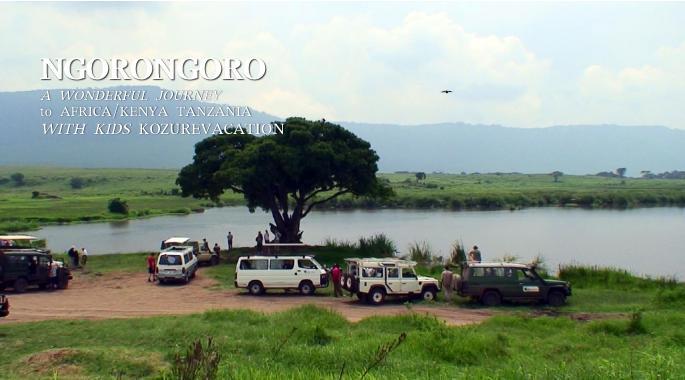 ンゴロンゴロクレーターの中の休憩所