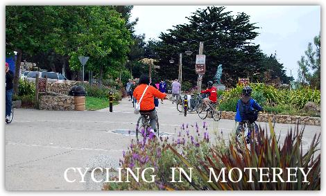自転車専用道