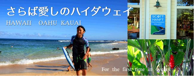 ハワイ・カウアイ島子連れ旅行記