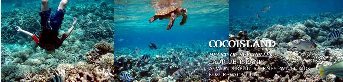 ココ島の海中写真