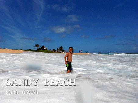 くだけて真っ白になった波と戯れる子供