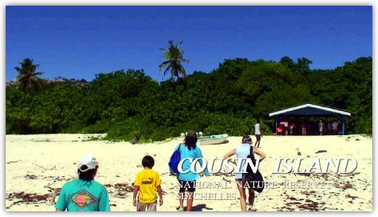 クーザン島の上陸した子供達
