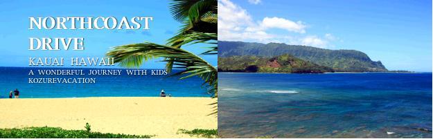 カウアイ島ノースコーストには誰もいない美しいビーチが点在しています