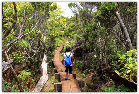 カウアイ島で子連れトレッキング。
