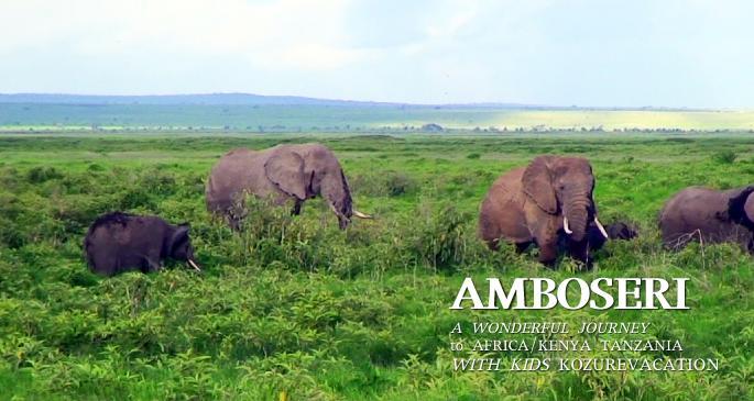 アンボセリ国立公園でアフリカゾウの群れと遭遇
