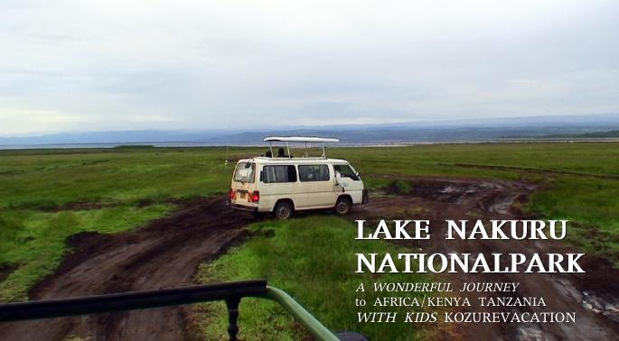 ナクル湖とサファリカー