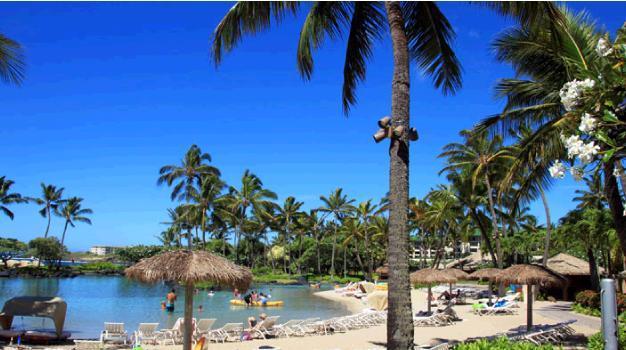 ラグーンプール。ヤシの木の囲まれている。ビーチにはパラソルが並んでいる。