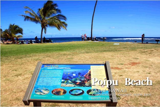 ポイプビーチの案内板。トロピカルフィッシュの絵が描かれている。