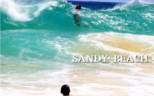 サンディビーチで泳ぐりゅう