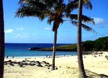 アナケナビーチ