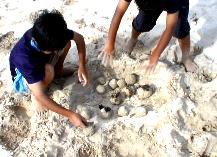 ビーチに砂でお団子作り