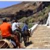 【ロバタクシーに揺られてフィラへ登る】サントリーニ島で子連れに大人気アトラクショ