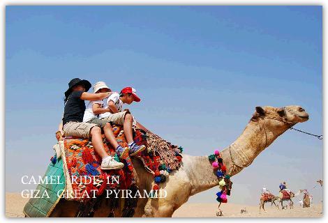 ラクダに揺られて砂漠をゆく