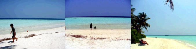 モルジブ・ビヤドゥ島