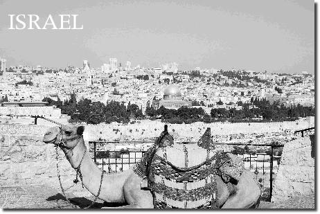 イスラエルについて