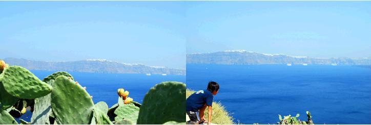 マノラスのサボテンとカルデラ海の眺め