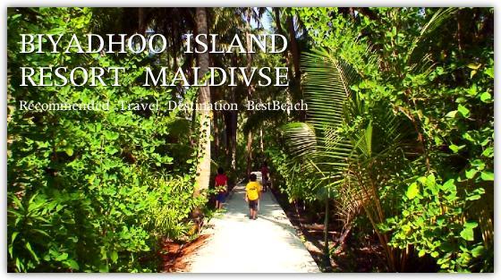 食後の島内散歩