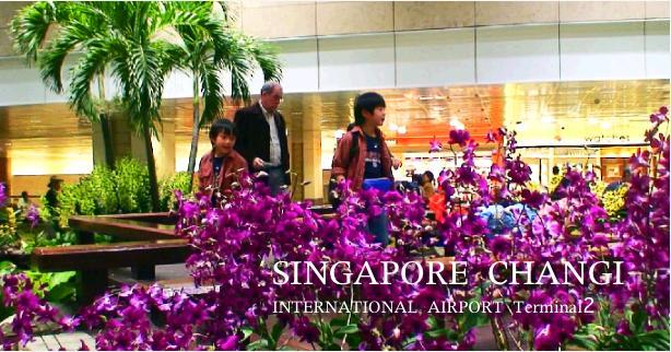 シンガポールチャンギ空港で乗り継ぎ