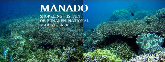 ブナケンのスノーケリングポイント・ティムー1の珊瑚礁