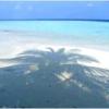 ビヤドゥ島のハウスリーフ