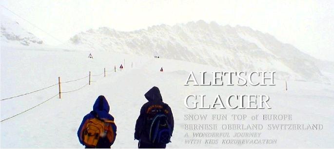 アレッチ氷河を見ながら歩く
