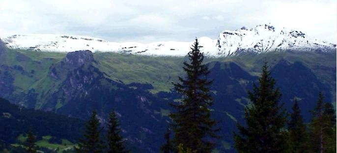 登山鉄道の車窓の景色