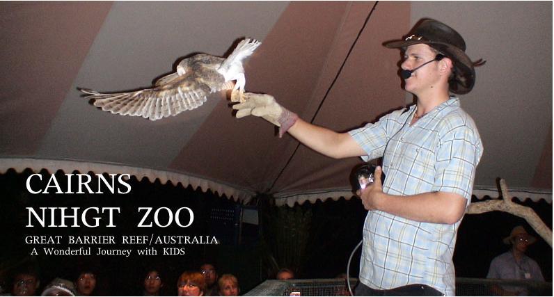 フクロウのショー