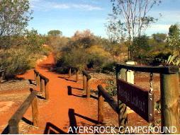 キャンプ場内の展望台へ続く道