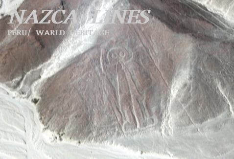 子連れにおすすめの世界遺産ランキング第6位~ナスカの地上絵・ペルー