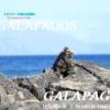 子連れにおすすめの世界遺産ランキング第7位~ガラパゴス・エクアドル