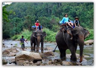 子供ポイント大人ポイントで旅行のプランニングを評価する