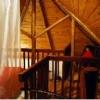 バコナフォレストロッジのロフト付き客室