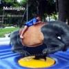 モロジリオ庭園の遊具