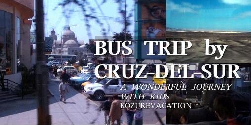 ペルーハイウェイバスの旅