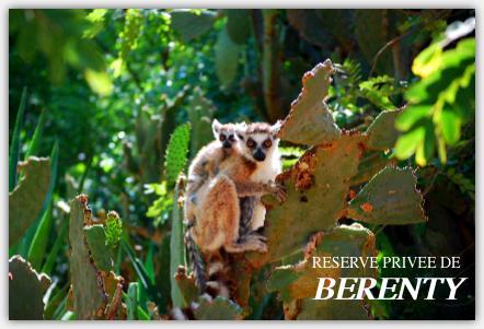 ベレンティー保護区