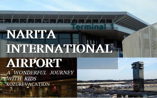 成田空港ターミナルビルの比較